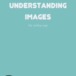 Understanding Images ebook